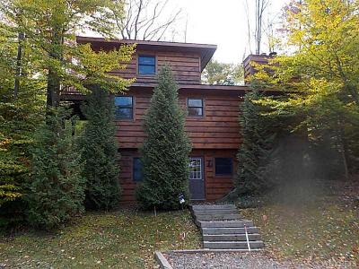 Ellicottville Single Family Home A-Active: 5799 Route 219