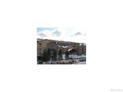 Ellicottville Condo/Townhouse A-Active: 6557 Holiday Valley Rd - 301/303-4 Tamarack Clb