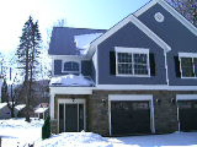 Ellicottville Condo/Townhouse A-Active: 3 Abbey Lane
