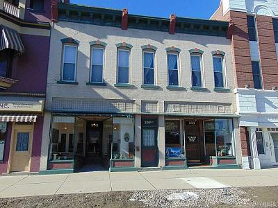 Commercial A-Active: 309 North Union Street