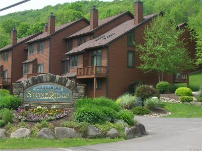 Ellicottville Condo/Townhouse A-Active: 14 Stone Ridge