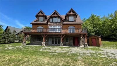 Ellicottville Single Family Home A-Active: 6850 Niles Road
