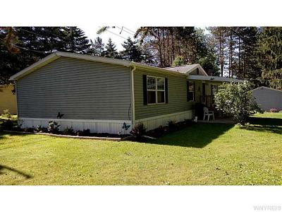 Allegany Single Family Home A-Active: 3958a Route 417