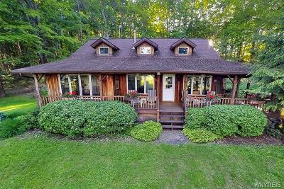 Ellicottville Single Family Home A-Active: 7285 Irish Hill Road
