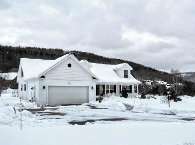 Ellicottville Single Family Home A-Active: 6550 Maples Road
