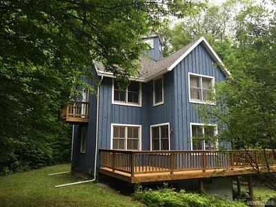 Ellicottville Single Family Home A-Active: 7424 Poverty Hill Road #14