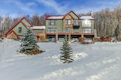 Ellicottville Single Family Home A-Active: 6848 Leslie Road