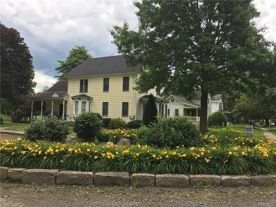 Ellicottville Single Family Home A-Active: 6469 Route 242 East
