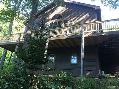 Ellicottville Single Family Home A-Active: 6835 Holiday Valley Road