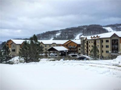 Ellicottville Condo/Townhouse A-Active: 6557 Holiday Valley Rd. 310/312-5 Tamarack Clb