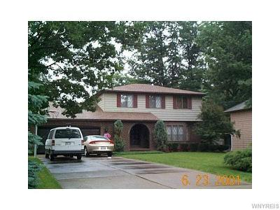 Lewiston Single Family Home A-Active: 5095 Dana Drive