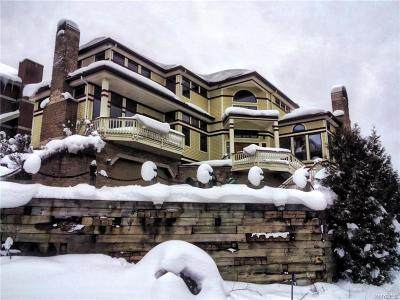 Ellicottville Single Family Home A-Active: 6245 Sunset Road
