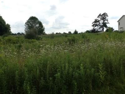 Rush Residential Lots & Land A-Active: 8000 West Henrietta Road