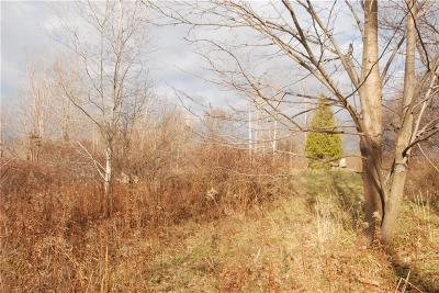 Newark NY Residential Lots & Land Sold: $22,000