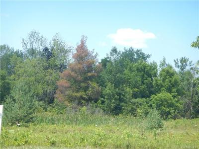 Riga Residential Lots & Land A-Active: West Buffalo Road