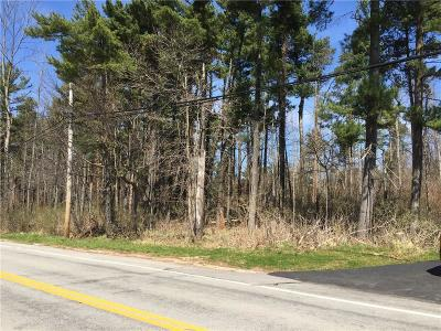 Monroe County Residential Lots & Land A-Active: 1636 Lake Road