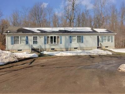 Marion NY Multi Family Home Sold: $110,000