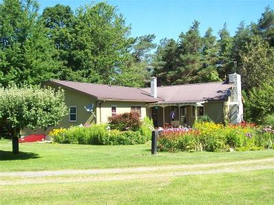 Naples Single Family Home A-Active: 6601 County Road 21