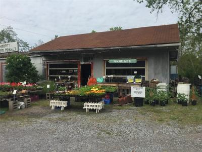 North Dansville NY Commercial A-Active: $99,900