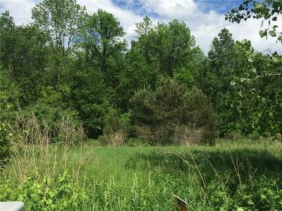 Residential Lots & Land A-Active: 24 Trout Creek