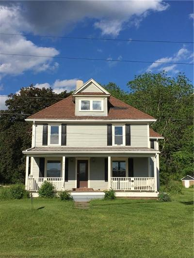 Dansville Single Family Home A-Active: 9208 State Route 36