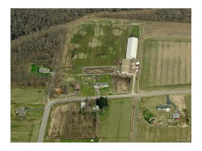 Residential Lots & Land A-Active: 6475 Bartz Road