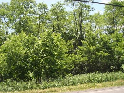Residential Lots & Land U-Under Contract: 00 North Creek Road