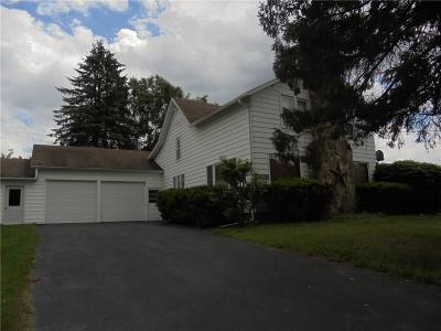 Dansville Single Family Home A-Active: 9336 Demmery Road