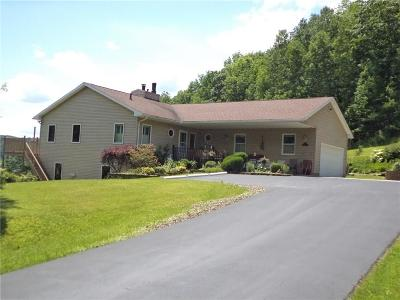 Hinsdale Single Family Home A-Active: 4553 Union Hill Road