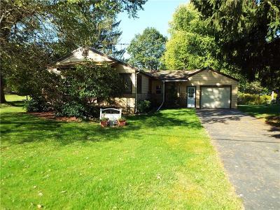 Portville Single Family Home A-Active: 395 Portville Eldred Road
