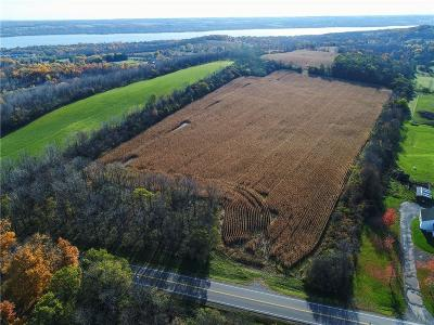 Ontario County Residential Lots & Land For Sale: 01 Parrish Street Extension