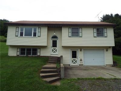 Allegany Single Family Home A-Active: 3526 Morgan Hollow Road