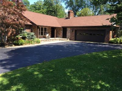 Seneca Falls Single Family Home A-Active: 2891 Rt 89 Highway