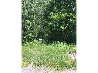 Monroe County Residential Lots & Land A-Active: Redman Road