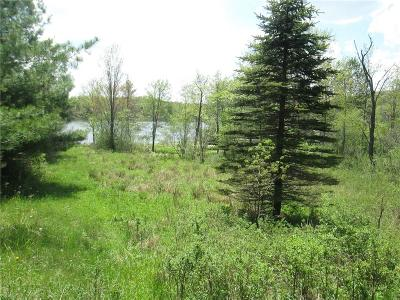 Residential Lots & Land A-Active: Amity Lake Road