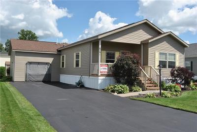 Victor Single Family Home A-Active: 6291 Lambert Street