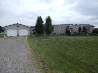 Livingston County Single Family Home A-Active: 9065 Rogers Road