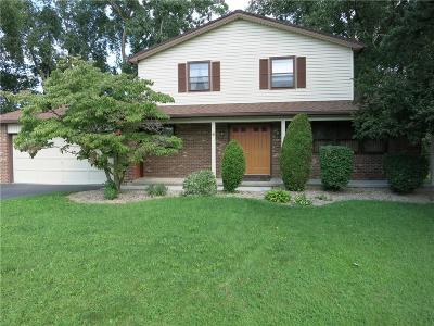 Irondequoit Single Family Home A-Active: 8 Casimir Circle