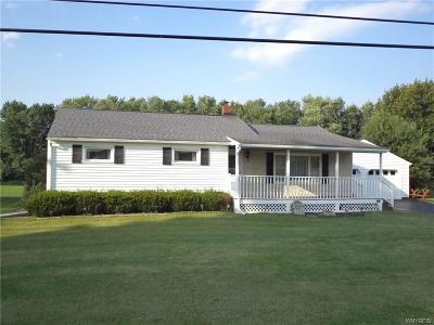 Allegany Single Family Home A-Active: 4028 South Nine Mile Road