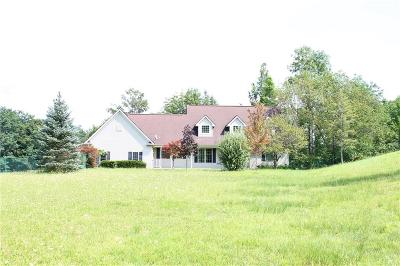 Victor Single Family Home A-Active: 777 Brownsville Road
