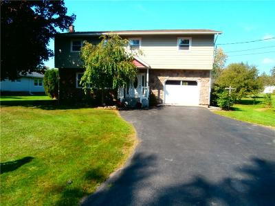 Seneca Falls Single Family Home A-Active: 3 Carol Ave Avenue