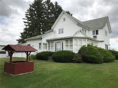 Springwater NY Single Family Home A-Active: $119,000
