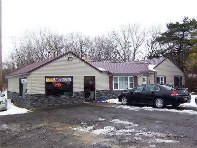 Commercial A-Active: 8364 Lewiston Road