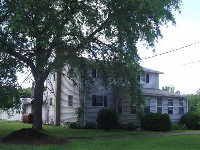 Seneca County Multi Family 5+ A-Active: 8632 Lodi Covert Townline Road
