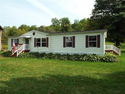 Allegany Single Family Home A-Active: 1440 Four Mile Rd