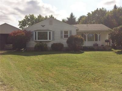 Dansville Single Family Home A-Active: 1769 Day Road
