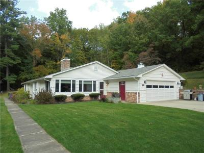 Hornellsville NY Single Family Home A-Active: $184,900