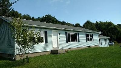 Groveland NY Single Family Home A-Active: $109,900