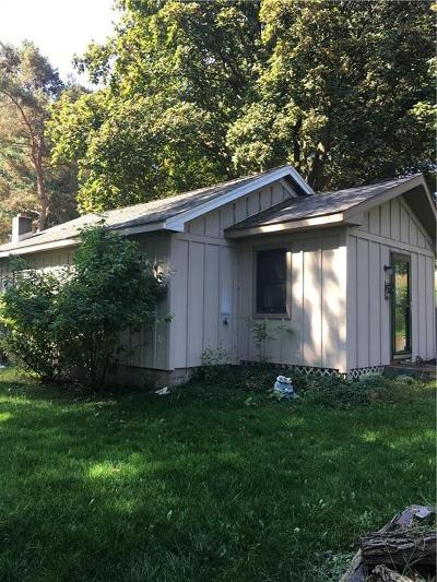 Genesee Falls Single Family Home A-Active: 6120 State Route 19a