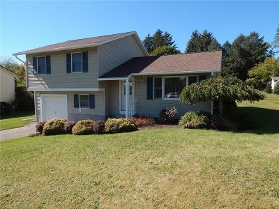 Wayland Single Family Home A-Active: 49 Southview Drive